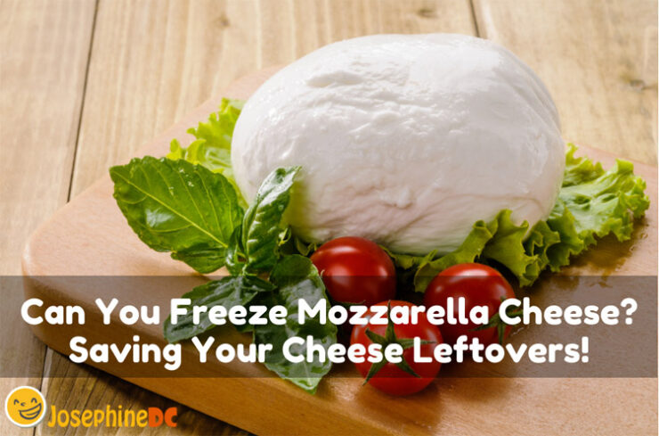 Can You Freeze Mozzarella Cheese? Saving Your Cheese Leftovers!