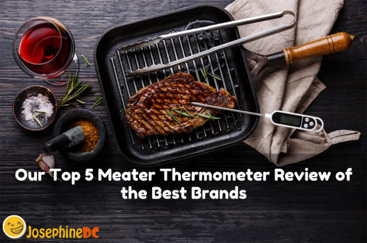 Our Top 5 Meater Thermometer Review of the Best Brands
