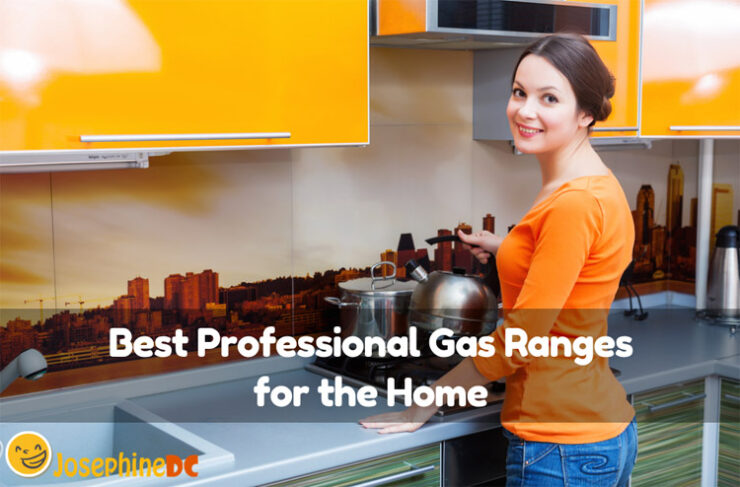 Are you having difficulty choosing amongst the best professional gas ranges for the home? I can help! Stick with me and discover the best for you.