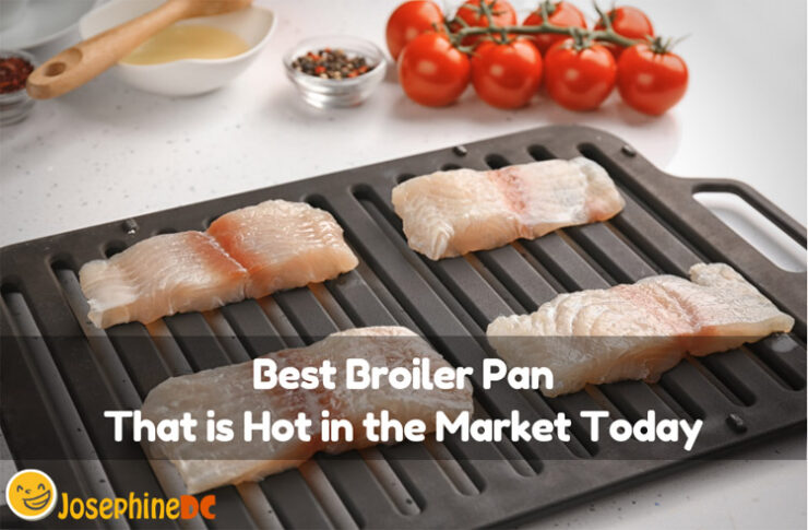 Your current broiler pan is just a disappointment. Have you heard of the best broiler pan that is leading in the market today? Check it this out!