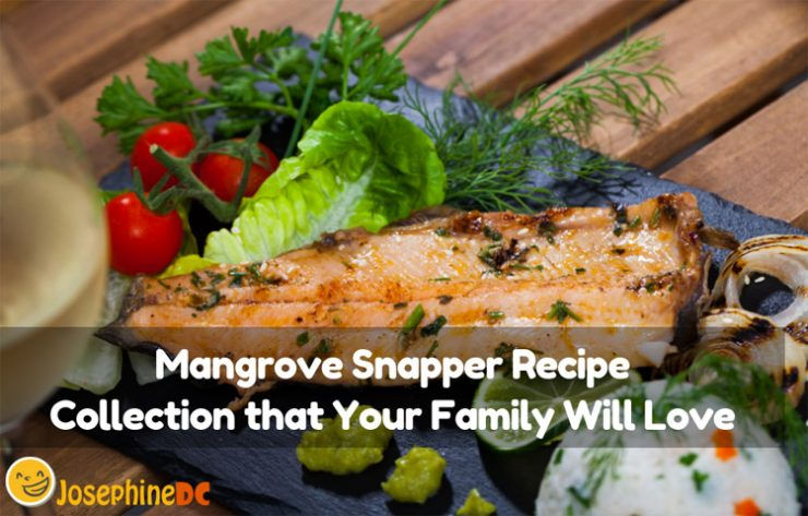Have you learned how to cook Mangrove Snapper already? I have a few Mangrove Snapper recipes that are simple for you who want to master it all.