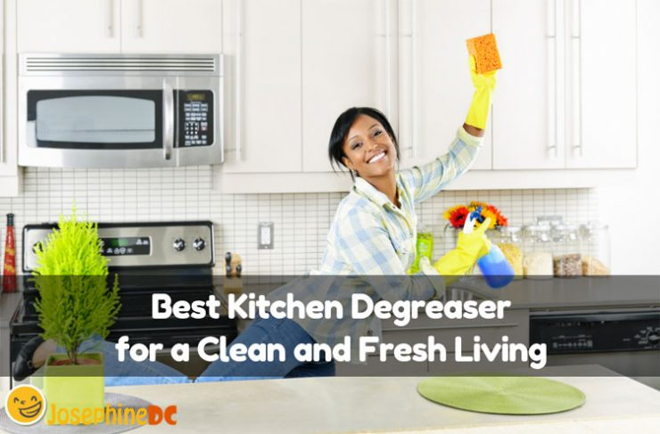 What is your technique to keep your kitchen spick and span? The best kitchen degreaser is my secret of a spotlessly clean area. Pick one from my top list!