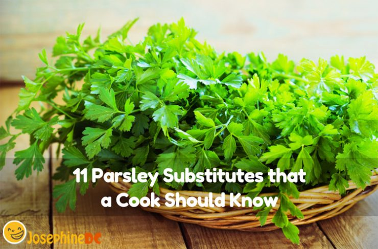 When condiments are running out, and you are in a hurry, think of alternatives. Let me share with you Parsley substitutes that a cook should know.