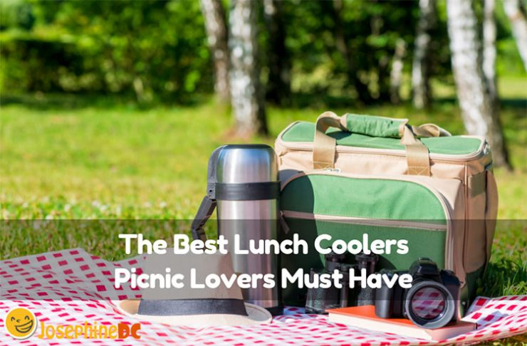 Do you need something to keep your food fresh and beverages cold on picnics? No worries, because I have the best lunch coolers that you might need for the perfect picnic date with your family and friends