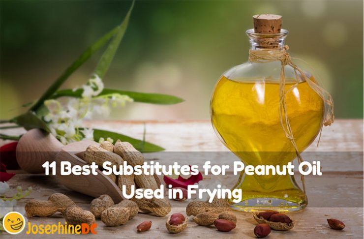 What happens when you run out of peanut oil when frying your meal? What will you do? Do not fret! I have the best substitutes for peanut oils used in frying just for you