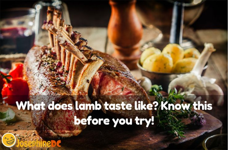 Are you curious? What does lamb taste like? It is not a typical meal around, but it sure does raises the curiosity in me