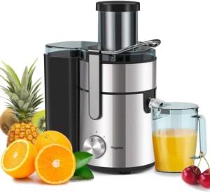 Baguette juicer - best juicer under $200