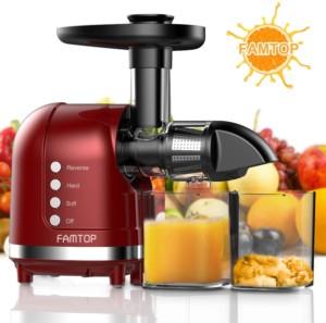 Famtop Masticating Juicer - best juicer under $200