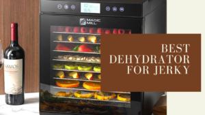 Best Dehydrator for Jerky